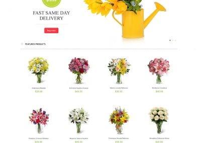 Flowers Store Magento
