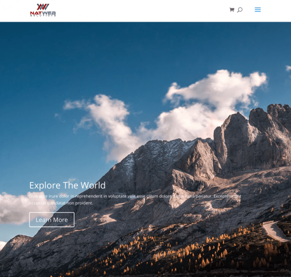 Travel Agency Website By NatWeb Solutions